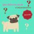 urgence-veterinaires-vetalia-vomissement-chiens