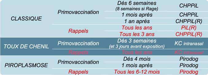protocoles CN copy2