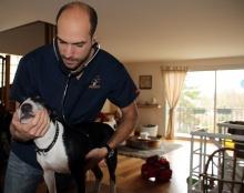 veterinaire ouvert le dimanche