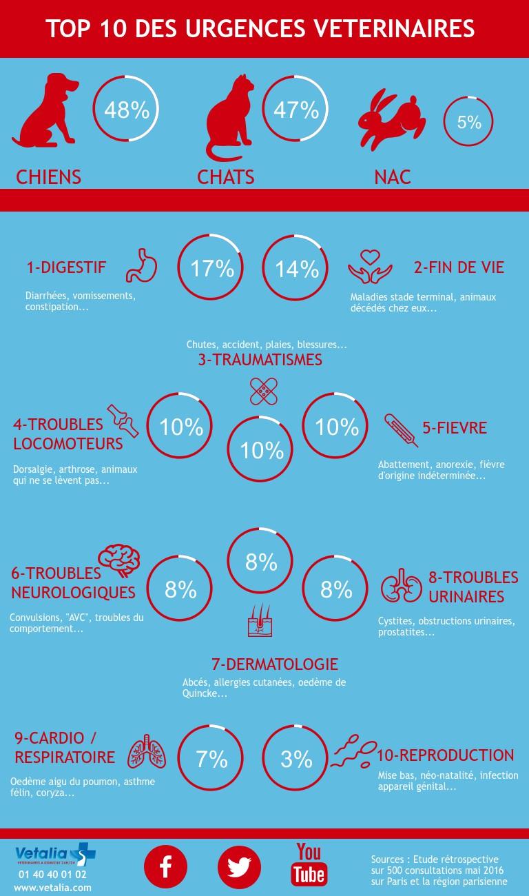 infographie urgences vétérinaires