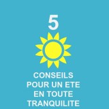 conseils-ete-chiens-chats